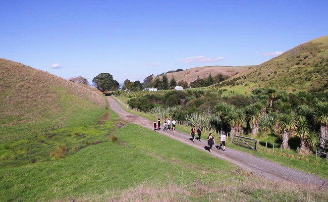 Motutapu walks_we recommend.jpg