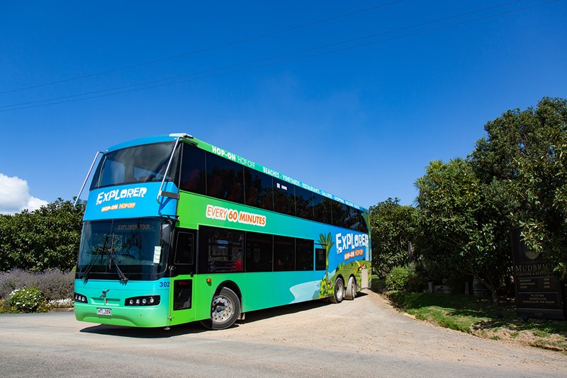 Adult bus fares-4967