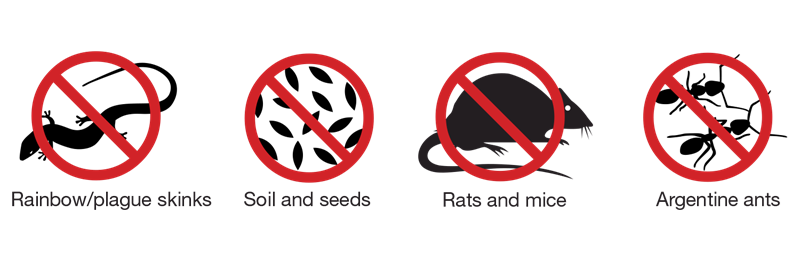 Image biosecurity-pest-icons (1).png