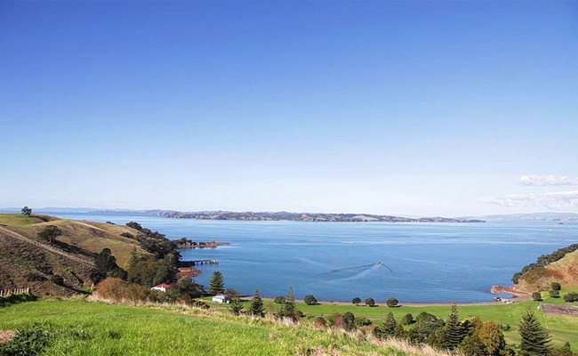 Motutapu Island – Walking trails, camping and beaches