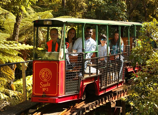 Coromandel Peninsula Driving creek railway - Fullers360
