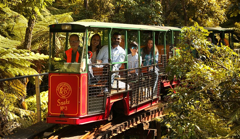 Image Coromandel Peninsula Driving creek railway - Fullers360
