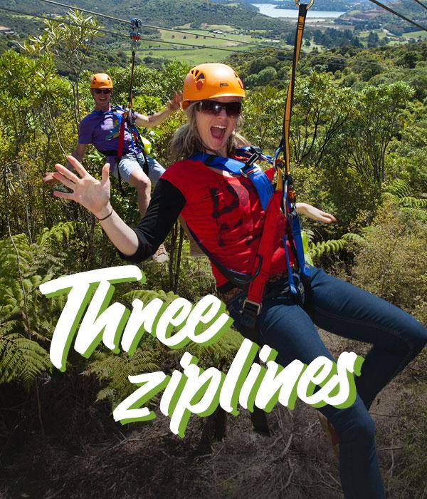 Waiheke Island Ecozip zip line - Fullers360
