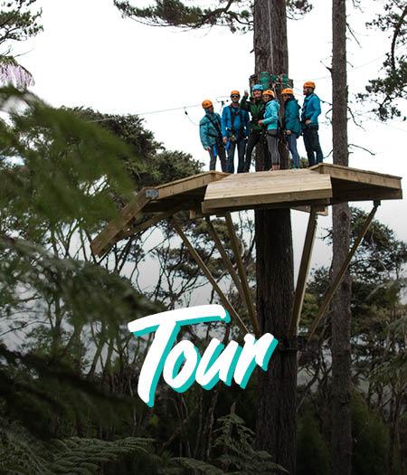 Coromandel Peninsula Driving Creek Zipline Tour - Fullers360