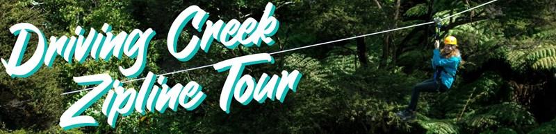 Image Coromandel Peninsula Driving Creek Zipline Tour - Fullers360